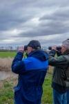 Vogelexcursie Kraayenbergse plassen met IVN Cuijk Beers