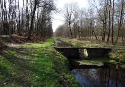 Foto's van Stichting Meerdaags Wandelevenement Venray