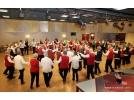 Organiseert telkenjare een dansmiddag voor de dansgroepen van de gemeente Sint Anthonis.