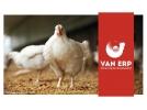 Antibiotica en groeihormonen in diervoeding is een fabel!