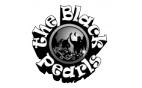 Bigband The Black Pearls