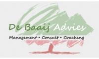 De Baaij Advies - management-consult-coaching